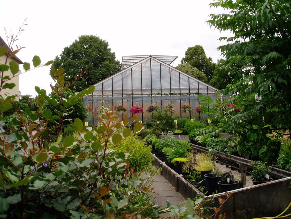 Bild: Gewächshaus des Botanischen Sondergartens Wandsbek