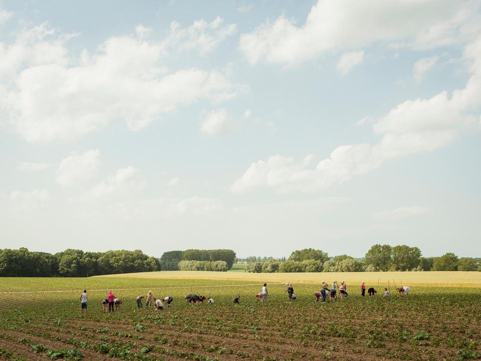 Bild: Peter Bialobrzeski: Bei Wismar, 2012