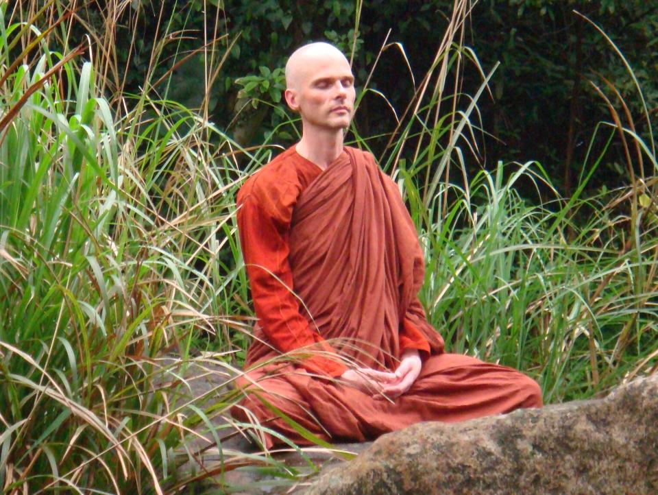 Ehrwürdiger Bhikkhu Anālayo