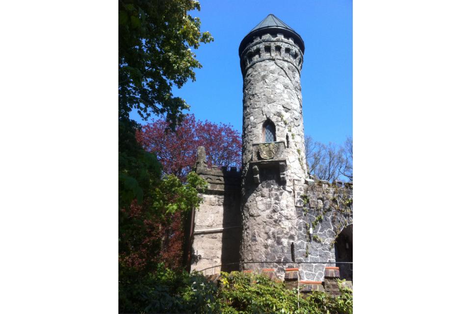 Bild: Burg Henneberg