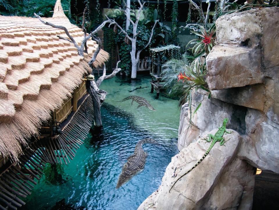 Bild: Hagenbeck_Krokodil-See