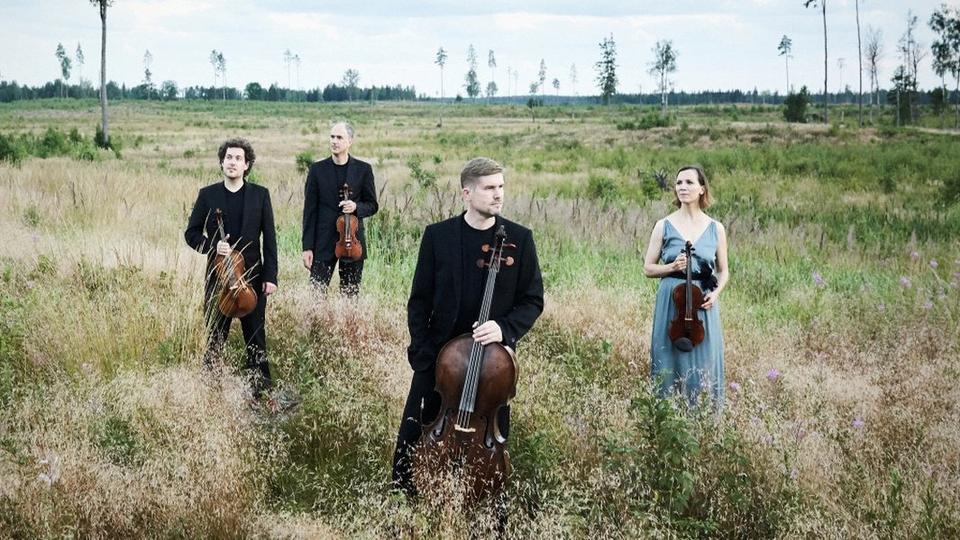 Bild: Signum Quartett / Ives & Schnittke