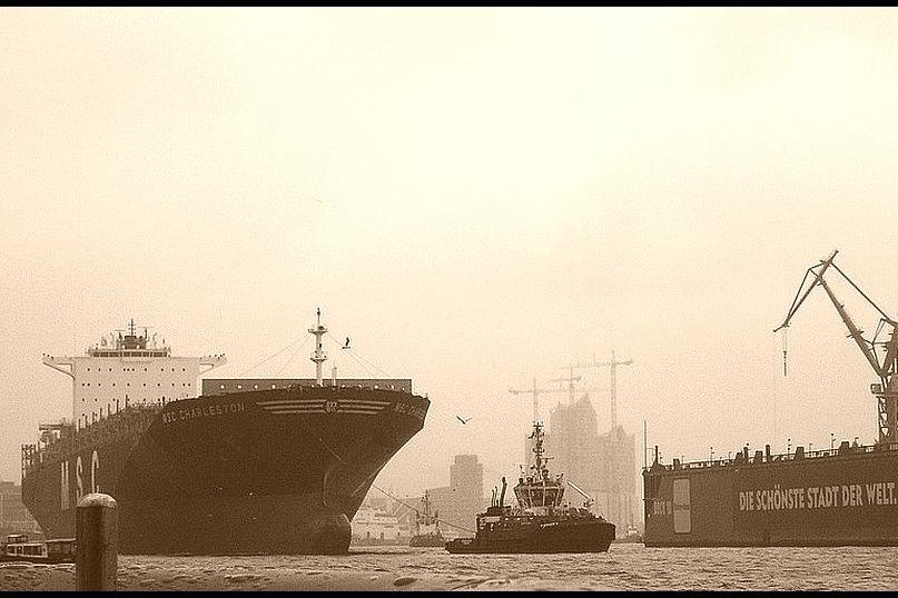 Bild: Was die Elbe ertragen muss
