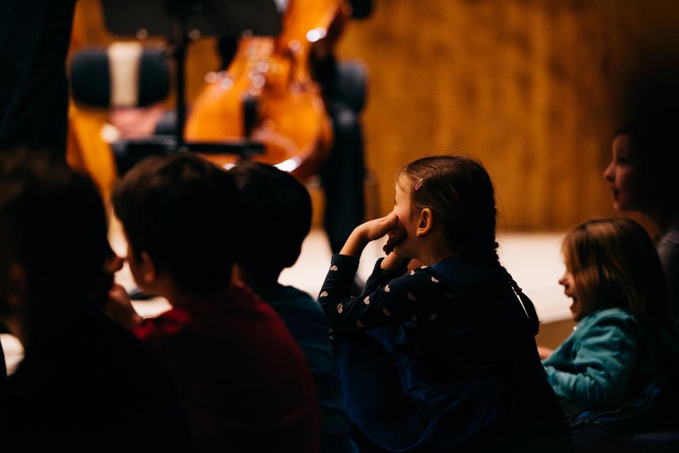 Bild: philharmonisches-staatsorchester