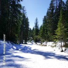 Bild: Winterreise - nach Franz Schubert mit Hendrik Lücke