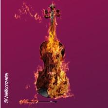 Bild: Vivaldi - Die Vier Jahreszeiten - Kammersolisten Berlin