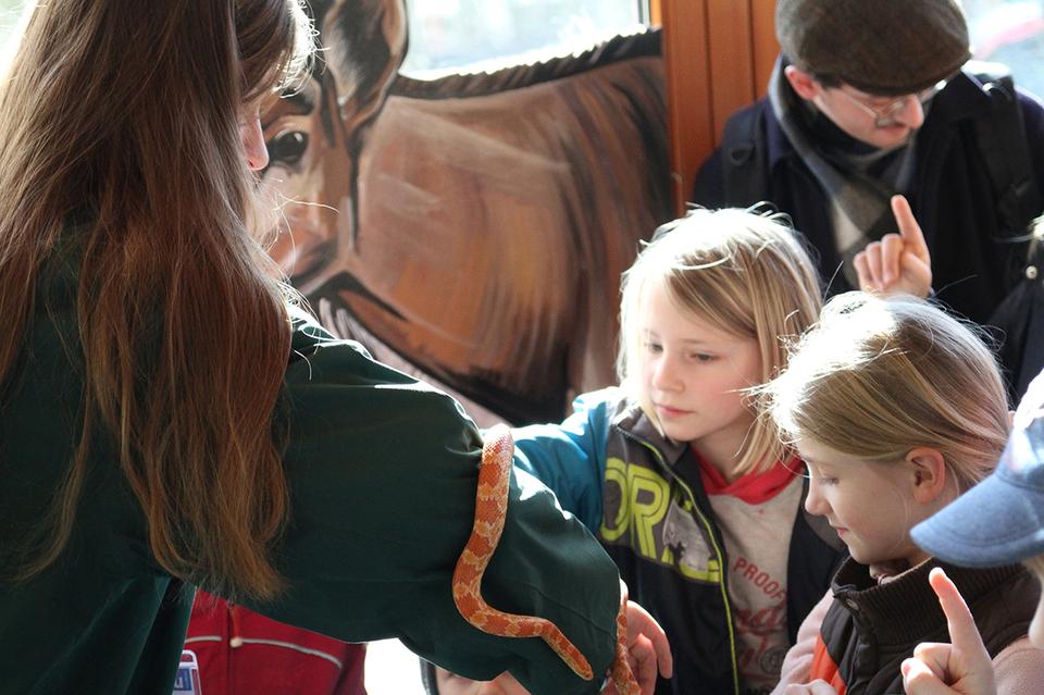 Bild: Ferien im Tierpark - Kleiner Tierpfleger
