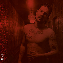 Bild: Joey Bargeld - Punk Is Dead Tour 2020