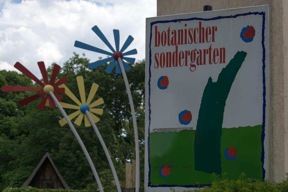 Bild: Logo Botanischer Sondergarten und IGA Blume