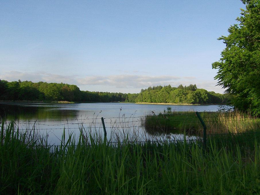 """Bild: """"Bredenbeker-Teich"""""""