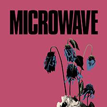 Bild: Microwave
