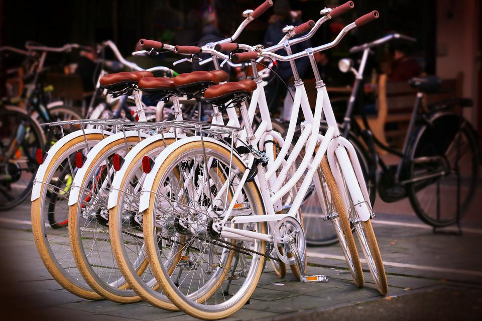 Bild: Fahrradbörse