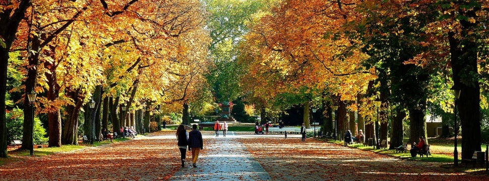Herbstspaziergang im Park, © pixabay.com/Moritz320
