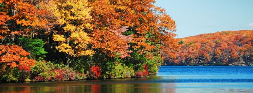 Herbst, © WetterOnline