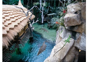 Tierpark Hagenbeck Krokodil-See