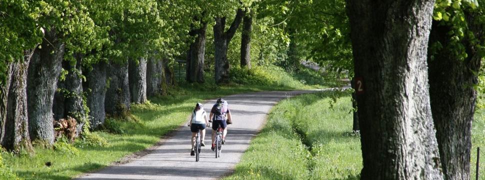 Fahrradtour, © Albrecht E. Arnold / www.pixelio.de