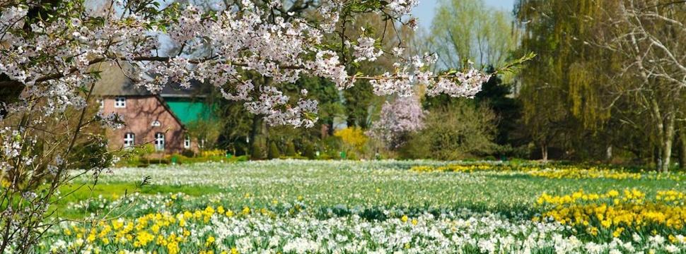 Arboretum Thiensen, © Fotokreis Pinneberger Baumschulland