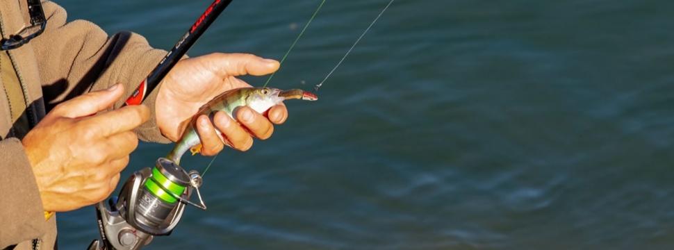 Angler mit Fisch, © Couleur / pixabay.com