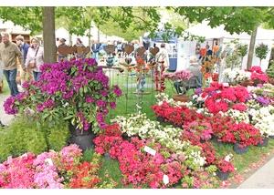 trends-Markt im Park – große Auswahl und schönes Ambiente im Norderstedter Stadtpark