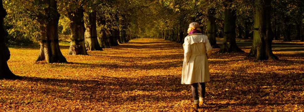 Spaziergang im Herbst, © WetterOnline