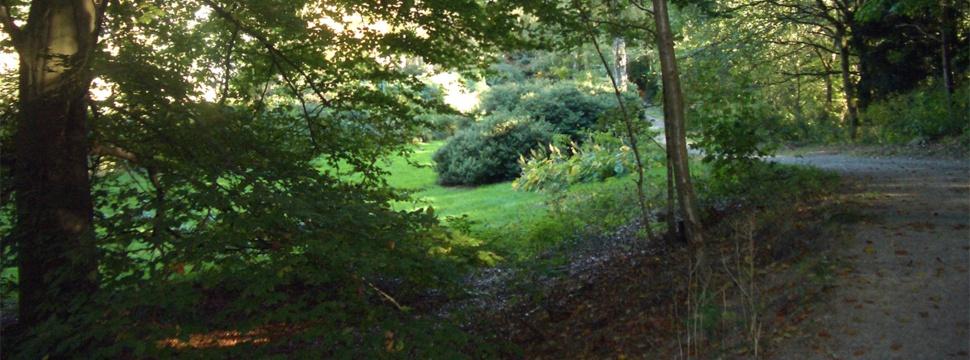 Waldpark Falkenstein - Sven-Simon-Park